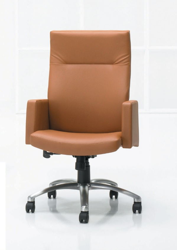 Paoli Salano Office Chair Make Yourself Comfortable With Paoli Office Furniture